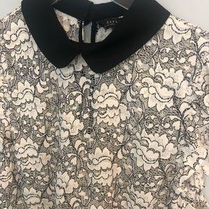 Zara Ivory & black lace collared tank/shell. Sz S